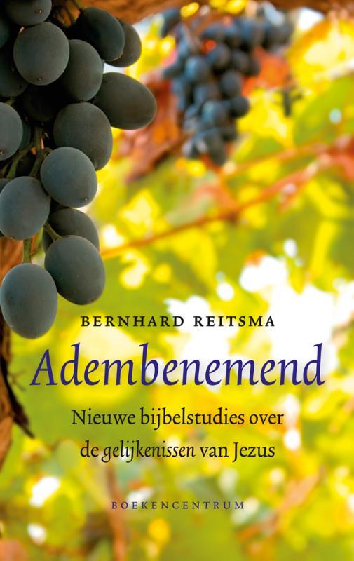 Bernhard Reitsma - Adembenemend